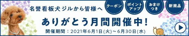 6月イベント「ありがとう月間」
