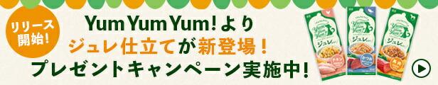 YumYumYum!キャンペーン