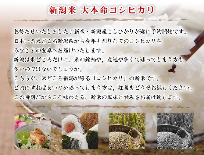 新潟の新米は越路早生からはじまります。