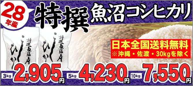 特撰魚沼産コシヒカリ