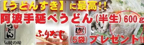 【ふりだしプレゼント!!】阿波手のべうどん(半生) 600g/ふりだし5袋パック付
