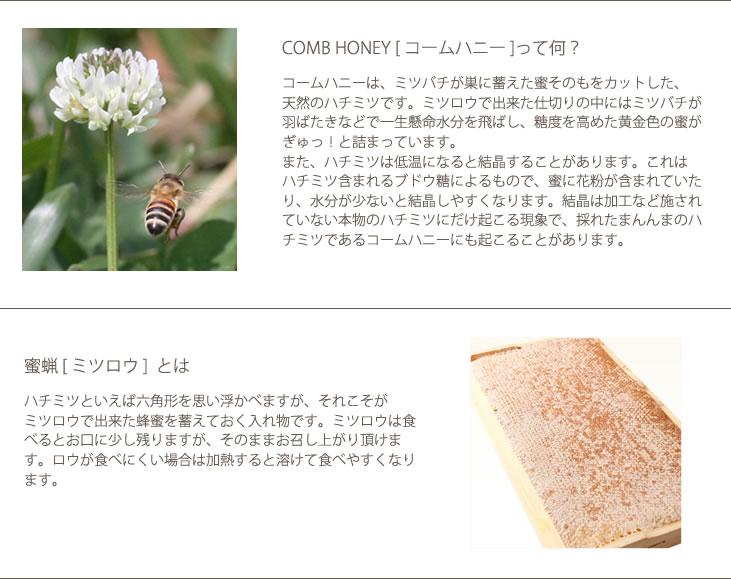 ニュージーランド産コームハニー Comb Honey ギフトに人気