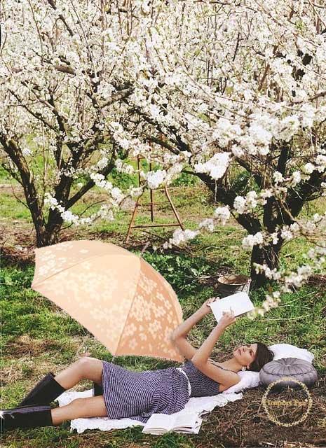 槇田商店 長傘 桜 さくら 晴雨兼用 雨傘 甲州織 ジャガード ベージュ