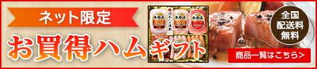ネット限定お買得日本ハムギフト