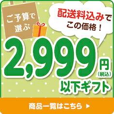 ご予算で選ぶ2,999円以下ギフト