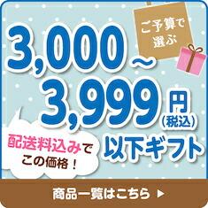 ご予算で選ぶ3,000円から3,999円以下ギフト