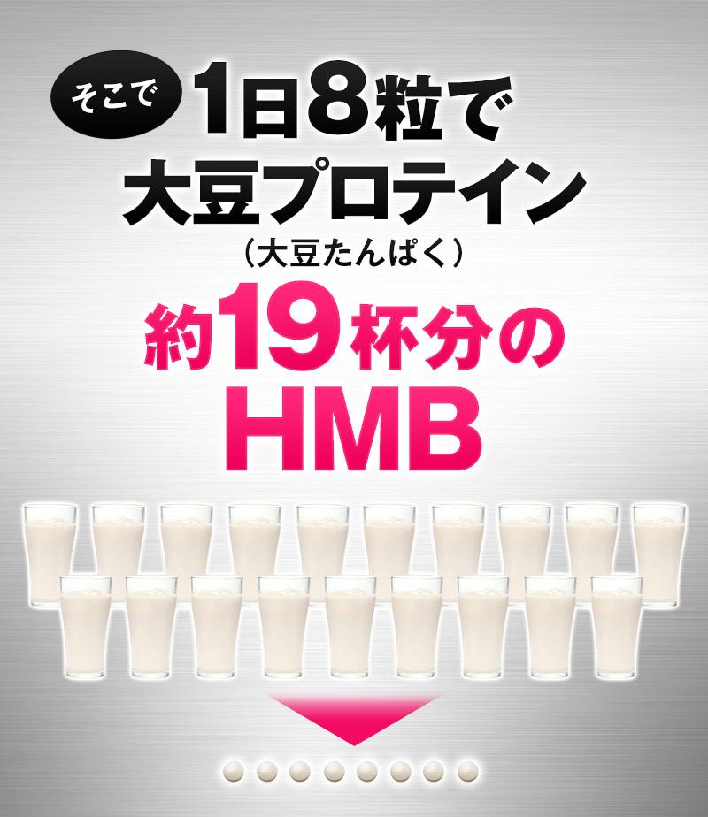大豆プロテイン19杯分のHMB