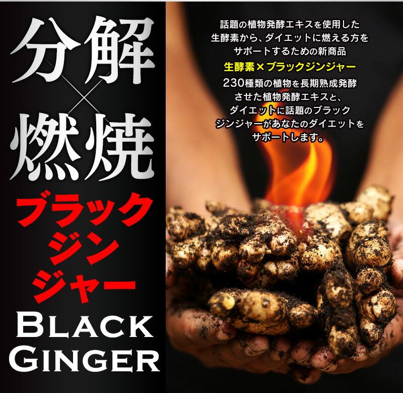生酵素×ブラックジンジャー