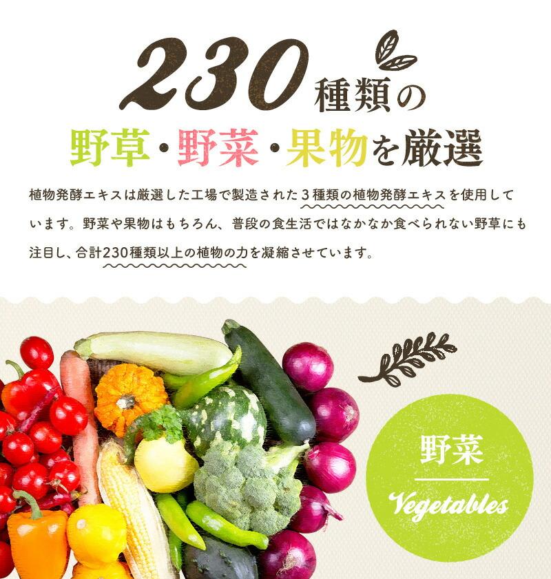 230種類の野草・野菜・果物を厳選