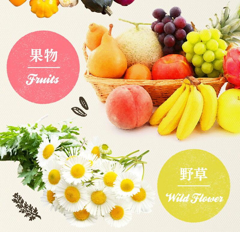 野草・野菜・果物