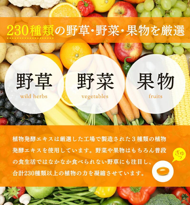 230種類の野菜・野草・果物を厳選
