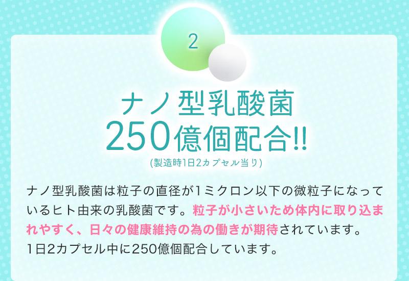 ナノ型乳酸菌250億個配合!!