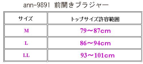 ann9891-saizu-500