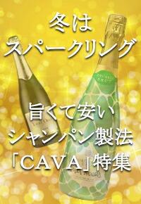 CAVA特集