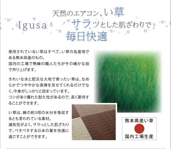 国産い草ラグ ひんやりラグマット