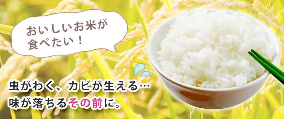 米びつ・ライスストッカー特集