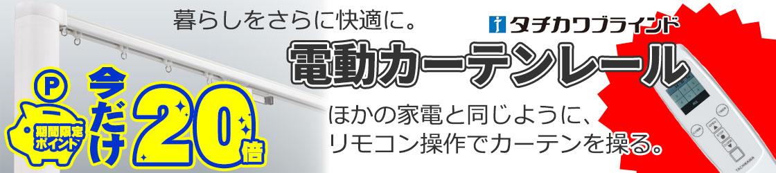 電動レール・トリーチェ