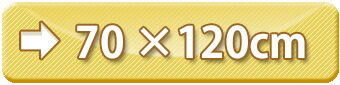 ラグサイズ:70×120cm