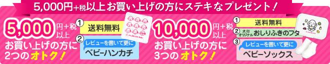 5,000円(+税)以上お買い上げの方にステキなプレゼント!