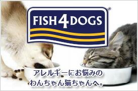 https://item.rakuten.co.jp/inuomoi/c/0000000313/