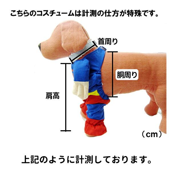 柴犬スーパーマン