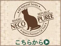猫ぴゅーれ