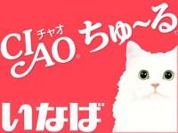 猫チュール