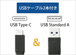 USB AケーブルとUSB Type-C ケーブルの2本を添付