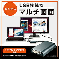 USB-RGB/D2S