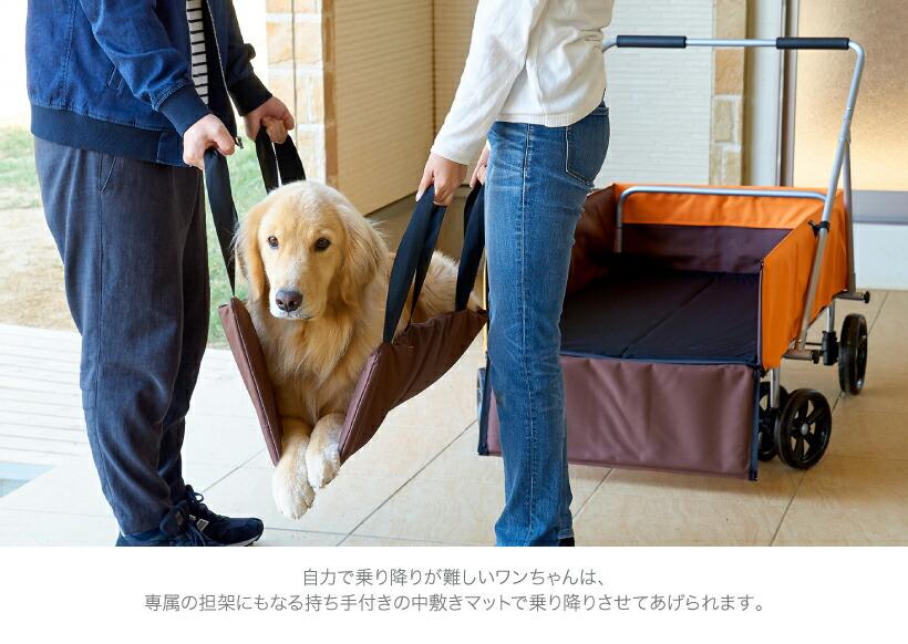 持ち手付き中敷きで犬を運ぶ男女