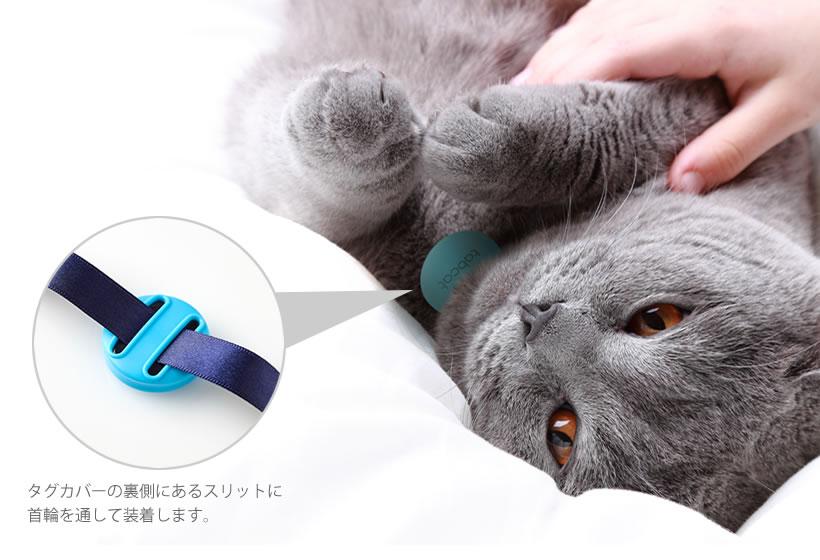 タブキャット tabcat