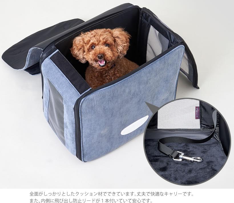 アーキカ GirlRich Dog