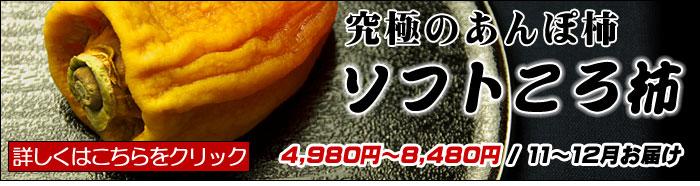 ソフトころ柿