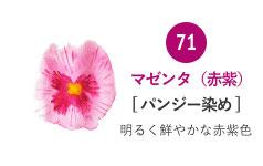 71 マゼンタ(赤紫) バンジー染め