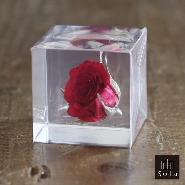 sola cube