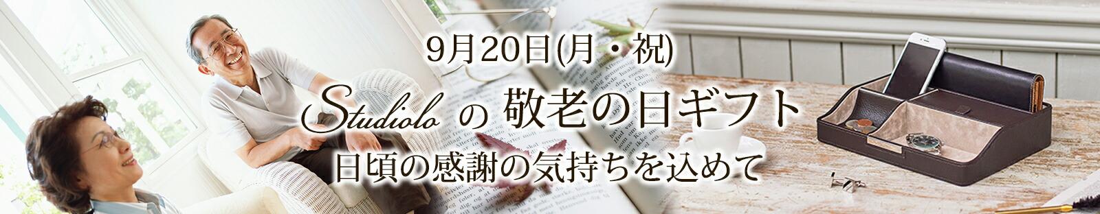 age_main_bnr