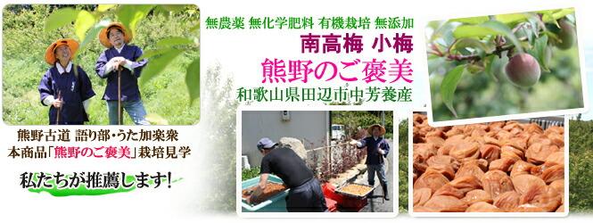 無農薬 有機栽培 梅干し。