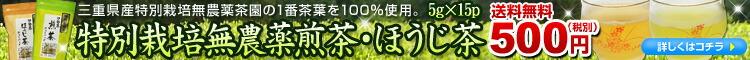 特別栽培無農薬茶