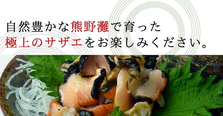 自然豊かな熊野灘で育った極上のサザエをお楽しみください。