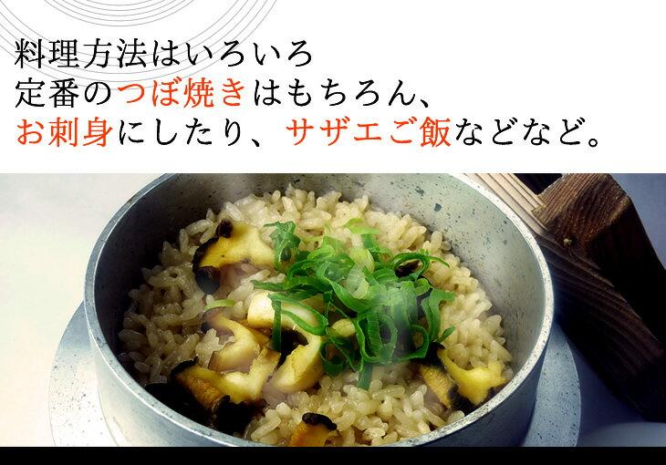 料理方法はいろいろ、定番のつぼ焼きはもちろん、お刺身にしたり、サザエご飯などなど。