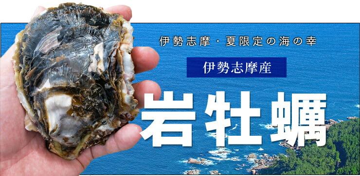 伊勢志摩産岩牡蠣