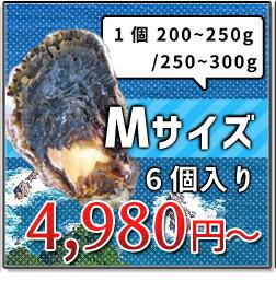 200-250g Mサイズ