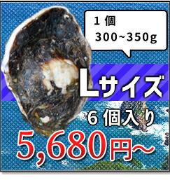 300-350g Lサイズ