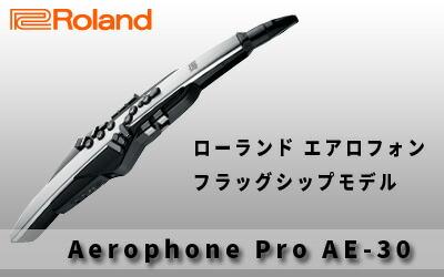 Roland / Aerophone AE-30