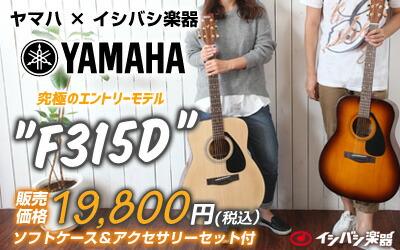 YAMAHA F315D アコースティックギター