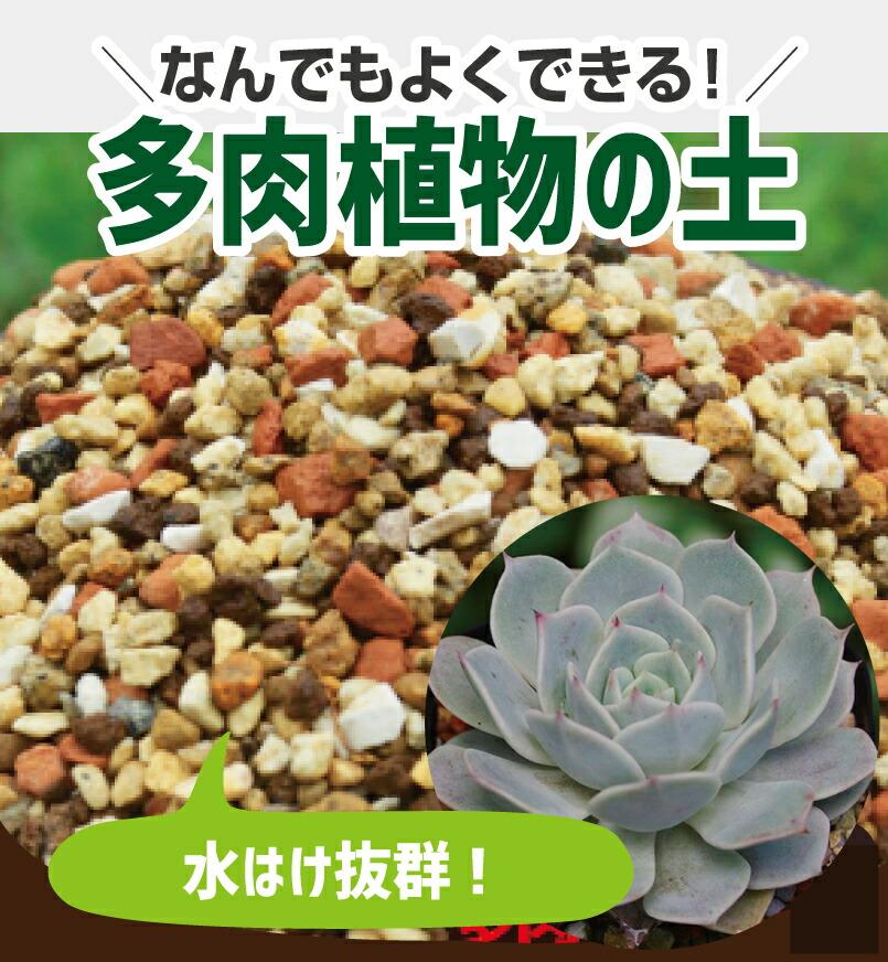 多肉植物の土