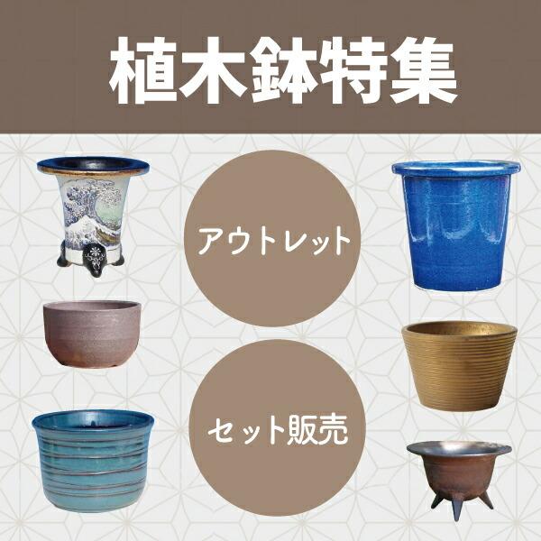 植木鉢祭り