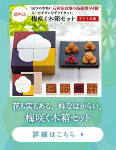 https://item.rakuten.co.jp/ishigamimura/80025/