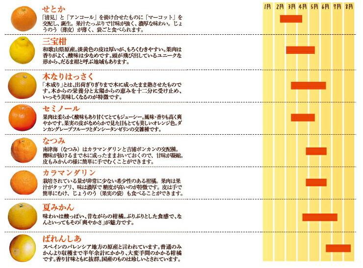 柑橘カレンダー2