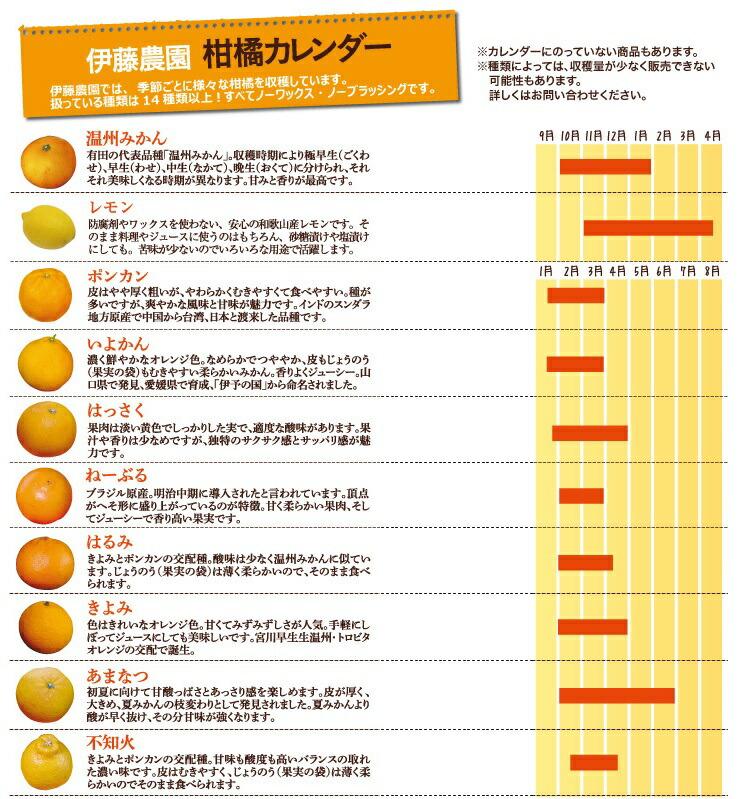 柑橘カレンダー1
